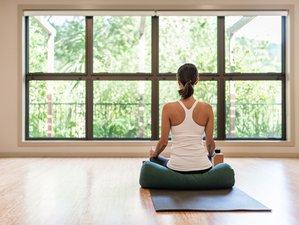 4 Day Self Love Yoga Retreat in Tasman, South Island
