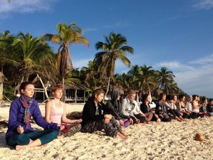 7 Days Yoga Retreat in Panama