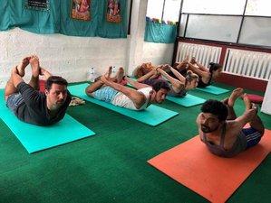 5 Day Introduction to Hatha Yoga Retreat in Pokhara, Gandaki Pradesh