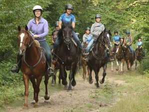3 Day Wilderness Horseback Riding Holiday in Algonquin Park, Ontario
