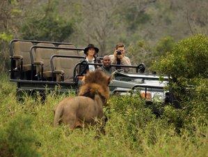 3 Days Luxury Safari in KwaZulu-Natal, South Africa