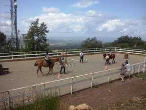 4 Day Taste of Trekking Beginner Horse Riding Course in Siena, Tuscany
