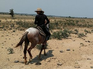 3 Day Trekking and Horseback Riding Holiday in Paz de Ariporo, Casanare