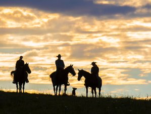 7 Day Pampered Week Horse Riding and Ranch Vacation in Rossburn, Manitoba