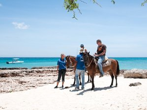 5 Day Amazing Nature and Beach Horse Riding Holiday on the Beautiful Caribbean Island in Noord