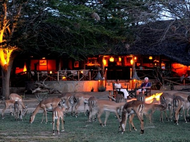 3 Days Majesty of Tsavo Safari in Kenya