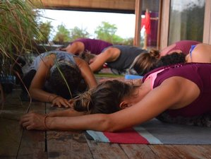 7 Days Spring Yoga Holiday and Detox Healing Retreat in South Bali, Indonesia