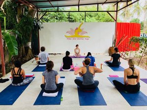 11 Day 200-Hour Hatha Yoga Teacher Training in Koh Samui, Surat Thani