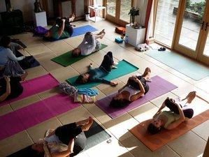 7 Days Shamanic Healing, Juice Fast, Nature and Yoga Retreat in Devon, UK