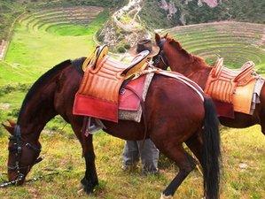 3 Day Mystical Contact Horse Riding Tour in Cusco, Peru