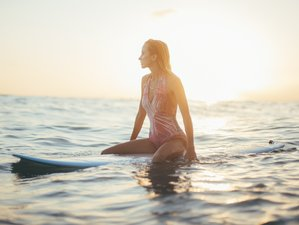Detox & Surfing