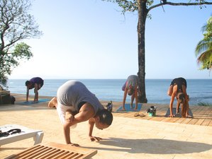 8 Days Aromatherapy Certification & Yoga Retreat in Panama