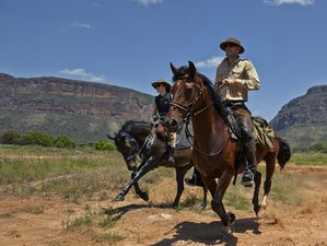 8 Days Riding Safari South Africa