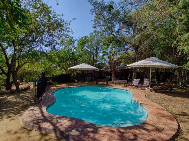 6 Days Budget Big Five Safari in Kruger National Park, South Africa