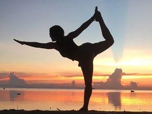 8 Day Rejuvenating Yoga Retreat in Koh Phangan