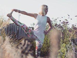 4 Days Awaken the Well of Love Within Meditation and Yoga Retreat Devon, UK