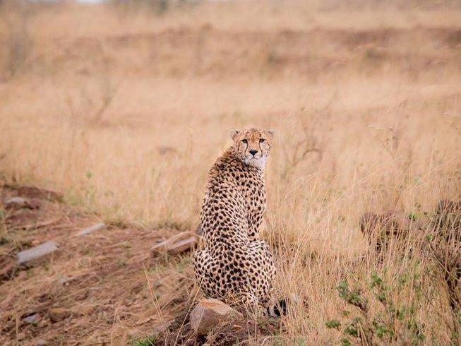 5 Days Magical Kenya Safari