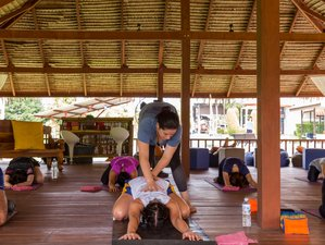 8 Days Muay Thai Training with Yoga in Phuket, Thailand