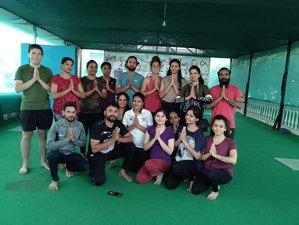 12 Day 100-Hour Yoga Teacher Training in Uttarakhand