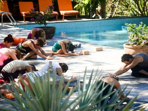 6 Days Pura Vida Yoga Retreat in Costa Rica