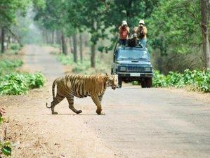 3 Day Jungle Safari Tour in Chitwan National Park, Bagmati Pradesh