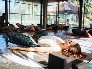 28 Days 200-Hour Restorative and Therapeutic Yoga Teacher Training in Koh Phangan, Thailand