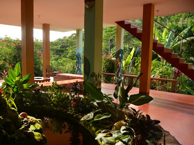 14 Days Ayahuasca & Yoga Retreat in the Amazon, Peru