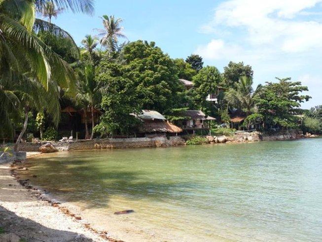 14 días vida sana retiro de yoga en Ko Phangan, Tailandia