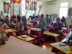 6 Day Silent Tibetan Buddhist Meditation Retreat in Coromandel