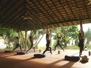 8 Day Surf Camp, Meditation, and Yoga Retreat in Hiriketiya