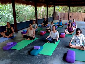 29 Days 250-hour Multistyle Yoga Teacher Training in Amed, Bali