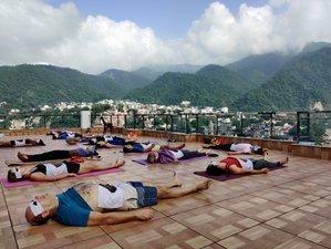 7 Day Ayurvedic Rejuvenation Detox and Naturopathy Yoga Retreat in Himalayas, Rishikesh