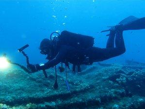 8 Day Diving Camp - Stay at Jho'La Surf Camp in Praia da Luz, Algarve