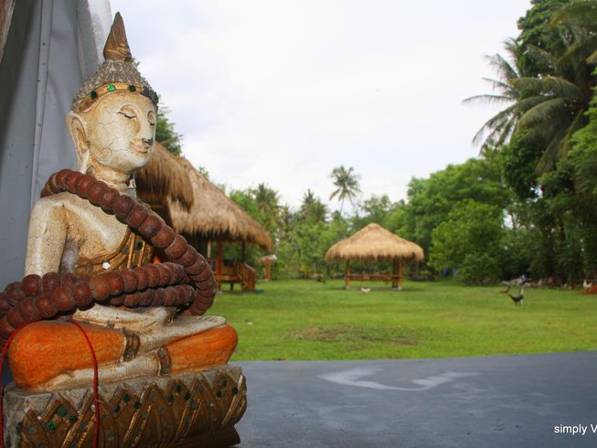 11 Days Balancing Yoga Retreat in Bali, Indonesia