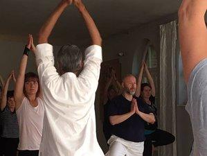 22 Day 200-Hour Traditional Hatha Yoga Teacher Training Course in Rishikesh