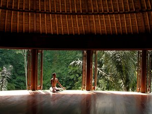 6 Days Meditation, Detox and Yoga Retreat in Bali, Indonesia