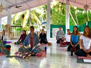 14 Days 100-Hour Meditation Teacher Training in Goa, India