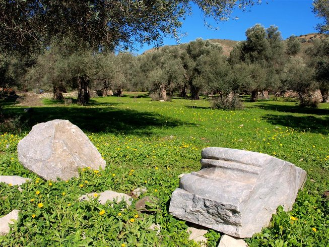 2 Days Secret of Olive Orchard Holidays in Crete