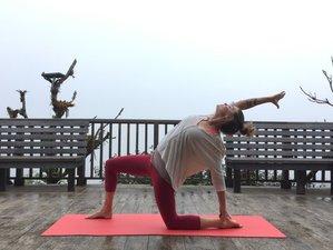 9-Daagse Ayurveda Meditatie en Yoga Retraite in Casco Antiguo, Panama