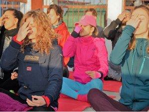 11 Tage Verjüngender Detox, Meditations- und Yoga Retreat in Rishikesh, Indien