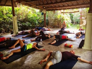 22 Days 200hr Yoga Teacher Training in Thailand