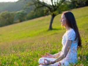7 Tage Art of Living All-inklusive Stille Retreat mit Meditation, Breathwork und Yoga im Schwarzwald