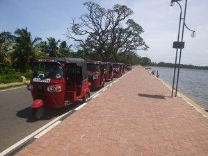 8 Days Unforgettable Tuk Tuk Tour in Sri Lanka
