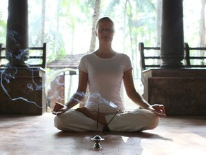 8 Days Yoga & Ayurveda Retreat in Kerala, India
