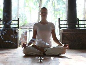 8 días de rejuvenecedoras vacaciones de yoga y Ayurveda en Kerala, India