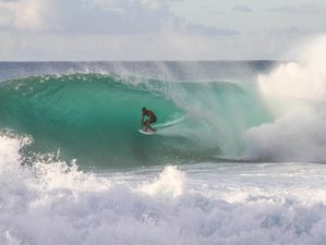 6 Day Tropical Surf Package: The Vegan Surf 'n' Yoga Retreat in Fuerteventura