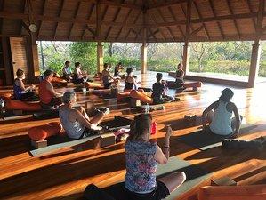 8 Week 200-Hour Online Elemental Yoga Teacher Training Course