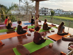 200 hours Hatha & Vinyasa & Ayurveda Yoga Teacher Training in Rishikesh, India