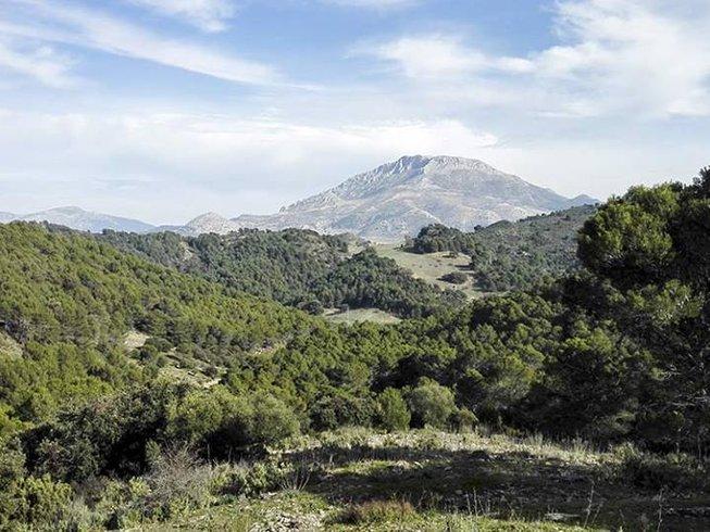7 Days Nature Yoga Retreat in Spain