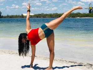 13 Days 200-Hour Approved Yoga Teacher Training Course in Florida, USA